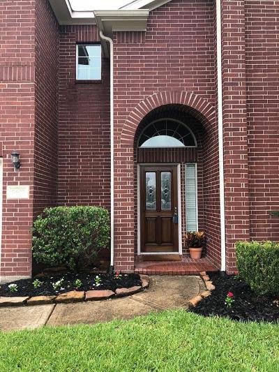 Tomball Single Family Home For Sale: 9602 Castlerock Springs Lane