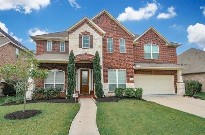 Sugar Land Single Family Home For Sale: 5218 Birch Falls Lane
