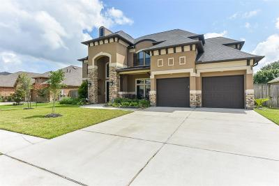 Friendswood Single Family Home For Sale: 1704 Waters Edge Drive