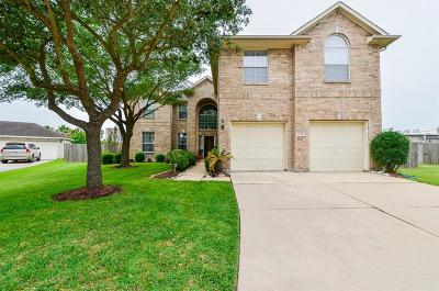 Sugar Land Single Family Home For Sale: 10506 Pulp Mill Court
