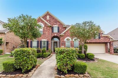 Sugar Land Single Family Home For Sale: 207 Chatham Avenue