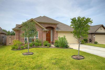 Tomball Single Family Home For Sale: 18543 Bristol Point Lane