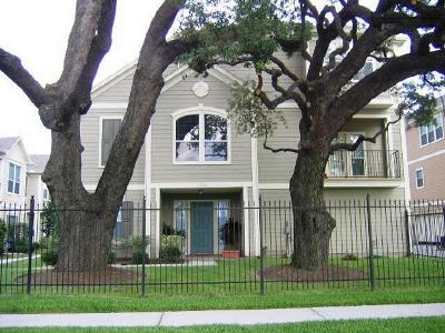 Houston Condo/Townhouse For Sale: 1323 Paige Street