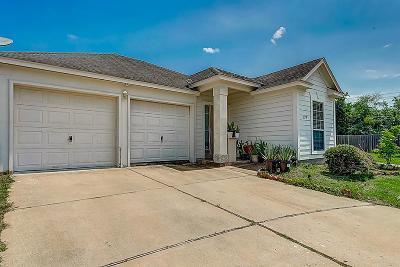 Houston Single Family Home For Sale: 11735 Logan Ridge Drive