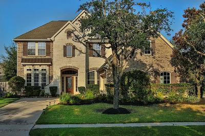 Sugar Land Single Family Home For Sale: 807 Newington Lane