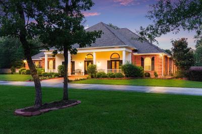 Conroe Single Family Home For Sale: 11961 Scarlet Oak Trail