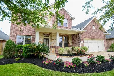 Katy Single Family Home For Sale: 28414 Stonestead Drive