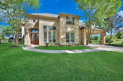 Katy Single Family Home For Sale: 4011 Emerald Branch Lane