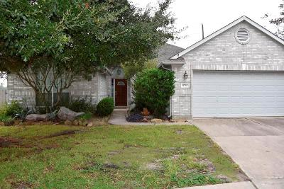 Tomball Single Family Home For Sale: 11742 Pinos Altos Drive