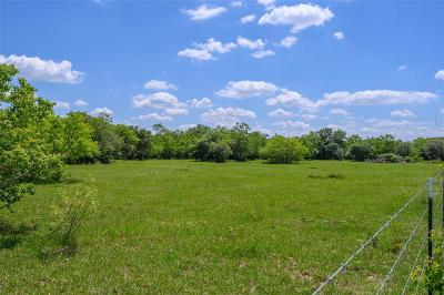 Colorado County Country Home/Acreage For Sale: Tract 2 First Street