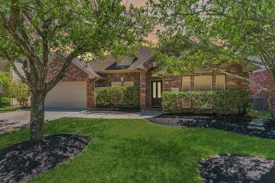 Single Family Home For Sale: 10034 Pine Flats Drive