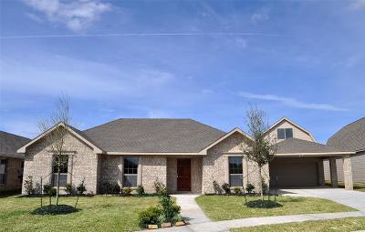 Manvel Single Family Home For Sale: 6719 Austin Cove