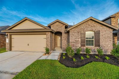 Katy Single Family Home For Sale: 3202 Zephyr Park Lane