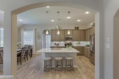 Houston Single Family Home For Sale: 16839 Big Reed Drive