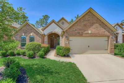 Tomball Single Family Home For Sale: 19 Garden Path Place