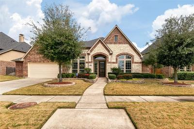 Harris County Single Family Home For Sale: 16206 Canova Hill Lane