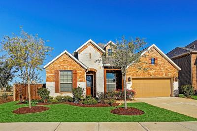 Katy Single Family Home For Sale: 6610 Abilene Drive