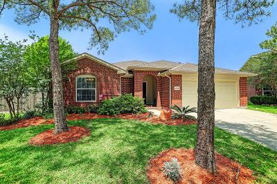 Houston Single Family Home For Sale: 10031 Bald Ridge Lane