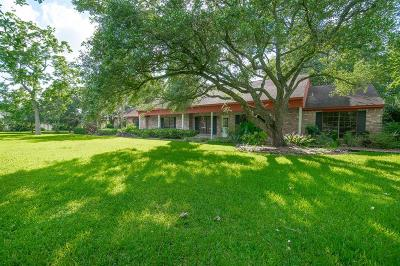 Friendswood Single Family Home For Sale: 304 N Clear Creek Drive