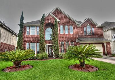 Houston Single Family Home For Sale: 15338 Southwood Trace Lane