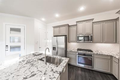 Houston Single Family Home For Sale: 3507 Vista Terrace Lane