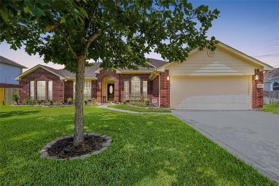 Houston Single Family Home For Sale: 20931 Burnt Amber Lane