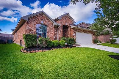 Tomball Single Family Home For Sale: 25507 Pacer Circle