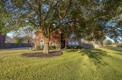 Missouri City Single Family Home For Sale: 519 Wild Peach Place