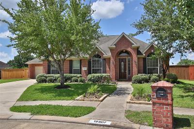 Houston Single Family Home For Sale: 12507 Sundew Cove Court