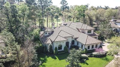 The Woodlands Single Family Home For Sale: 35 Hepplewhite Way