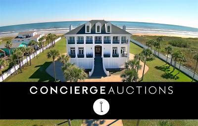 Galveston Single Family Home For Sale: 17007 Termini San Luis Pass Road