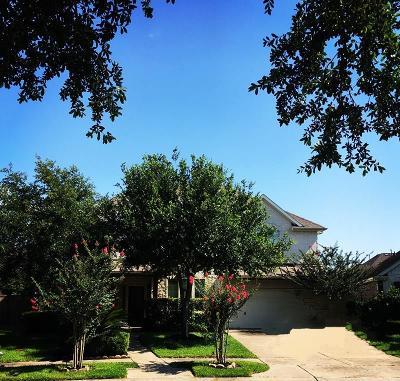 Katy Single Family Home For Sale: 5419 Sidonie Rose Lane
