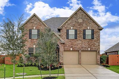 League City Single Family Home For Sale: 1514 Permesso Lane