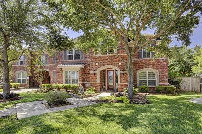 Sugar Land Single Family Home For Sale: 1802 Sterling Green