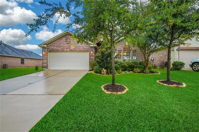 Tomball Single Family Home For Sale: 25615 Marmite Drive