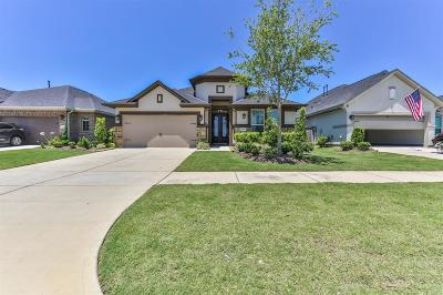 Fulshear Single Family Home For Sale: 29167 Turning Springs Lane