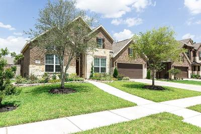Katy Single Family Home For Sale: 3423 Leaning Willow Drive