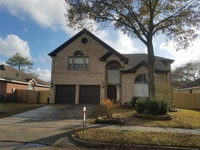 Houston Single Family Home For Sale: 2615 Silvermeadow Drive