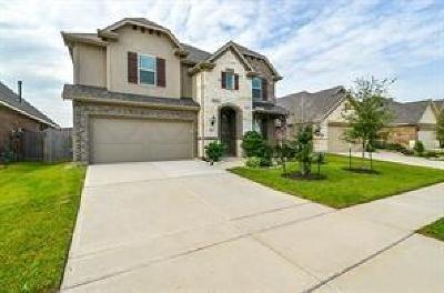 Houston, Katy, Cypress, Spring, Sugar Land, Woodlands, Missouri City, Pasadena, Pearland Rental For Rent: 20311 Aspen Manor Lane