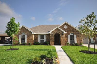 Manvel Single Family Home For Sale: 6738 Arlington Drive