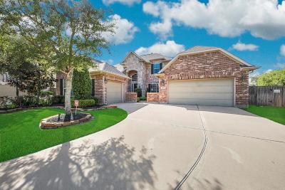Katy Single Family Home For Sale: 28134 Yellow Cornerstone Drive