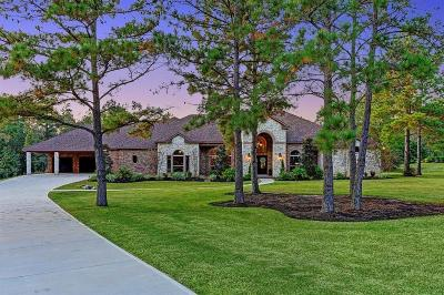 Montgomery Single Family Home For Sale: 104 Fish Creek Court