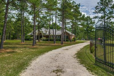 Single Family Home For Sale: 31202 Carrington Drive