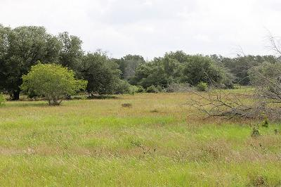 Columbus TX Farm & Ranch For Sale: $199,350