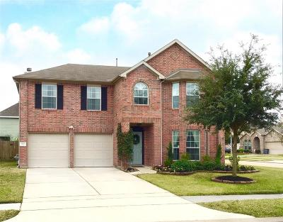 Katy Single Family Home For Sale: 22223 Blacktip Drive