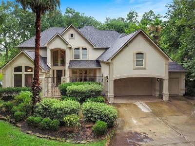 Conroe Single Family Home For Sale: 18707 Palm Beach Boulevard