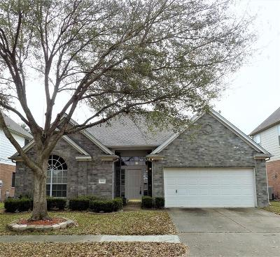Houston Single Family Home For Sale: 19623 Oakwood Falls Trail