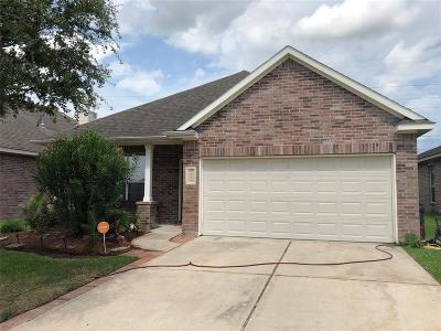 Houston Single Family Home For Sale: 6114 Hyacinth Path Way