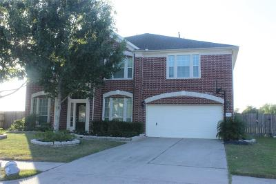 Pearland Single Family Home For Sale: 3002 Ivydale Road