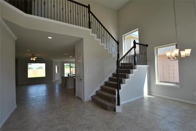 Pearland Single Family Home For Sale: 3708 Westland Court